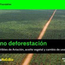 Biocombustibles en los aviones: nueva amenaza para la selva