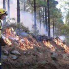 """Consejos para evitar los incendios forestales - """"Sin fuego no hay incendios"""""""