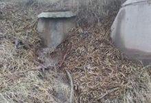 La Vinca Ecologistas en Acción solicita al Ayuntamiento de Firgas la reparación de alcantarillado en las cercanías del IES Villa de Firgas