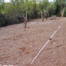 Preocupación por la posible instalación de una antena en el Pico Rayo/Osorio