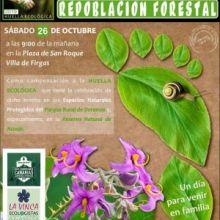 El sábado 26 de octubre se llevará a cabo una Plantación de Laurisilva en la Montaña de Firgas en compensación de la Huella Ecológica de la RUTA DORAMAS